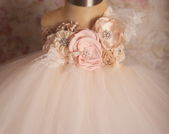 One Sweet Story Blush and Champagne Tutu Dress