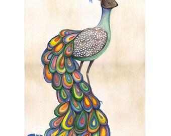 peacock painting, original watercolor, bird painting, surreal wall art, peacock watercolor