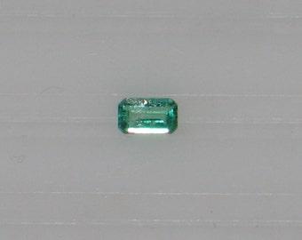 Emerald - 0.33 Carat - Very Good Color & Cut - Nice Jardin - Attractive Gem - Near Eye Clean Clarity