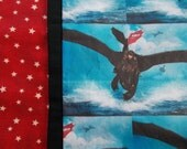 CLEARANCE/How to Train Your Dragon Childrens or Travel Pillow Case