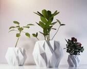 Polygon Plant Pot, 3D Printed Geometric Pots Modern Art, Plastic Indoor Planter, Math Inspired Contemporary Decor, EleMental 5 inch