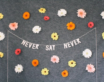 paper party banner, NEVER SAY NEVER - handmade, wall hanging, bedroom decor, house decor, interior decor, home decor, word banner, garland