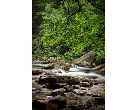 Flowing Mountain Stream over the Rocks in the Great Smoky Mountains in Tennessee No.558 - A Fine Art Nature Landscape Photograph