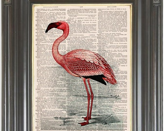 Pink flamingo tropical bird COUPON SALE Dictionary art print Wall art Sheet music print Digital art print Tropical wall art Item No. 832