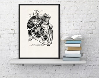 Summer Sale Wall art print Human Heart in black Science prints wall art Anatomy prints wall decor Gift, Love gift, giclee art SKA039WA4