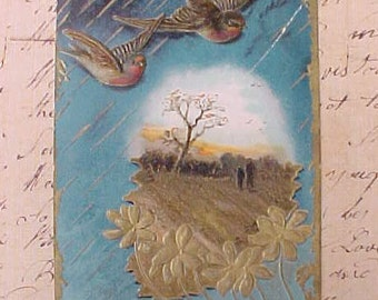 Lovely 1909 Era Postcard with Swallows in Flight