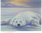 Reserved for phylliss v, Polar Bear Art, Original Pastel Drawing, Painting 10 x 8, Not a Print, ADA-396OA