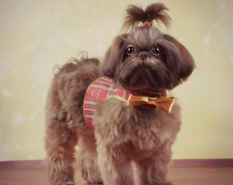 SAMPLE SALE:  CHRISTMAS -  Red Taffeta Plaid Dog Harness