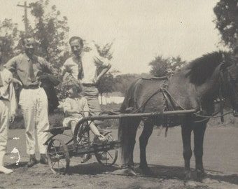 Future Sulky Driver - Antique 1910s Girl, Pony and Dapper Assistants Silver Gel Photograph