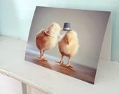 Greeting Card Chicken Couple In Top Hat And Kerchief Baby Animal Photo Anniversary Card Chicks #64in Hats (1)
