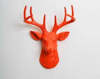 Faux Deer Mount - The MINI Anastasia - Orange Resin Deer Head- Stag Resin Orange Faux Taxidermy- Chic & Trendy