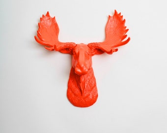 White Faux Taxidermy Mini Moose Head -The MINI Asher - Orange Moose Head - Faux Taxidermy - Chic Resin Animal Head Wall Hangings & Ornaments