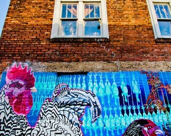 Asheville, NC Urban Photography The Chicken of Chicken Alley, Street Art, Graffiti, Creative Murals, Urban Mural Art, Colorful Wall Art