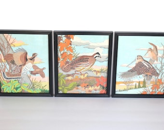 Bird Trio - Vintage Set of 3 Bird Prints in Black Frames