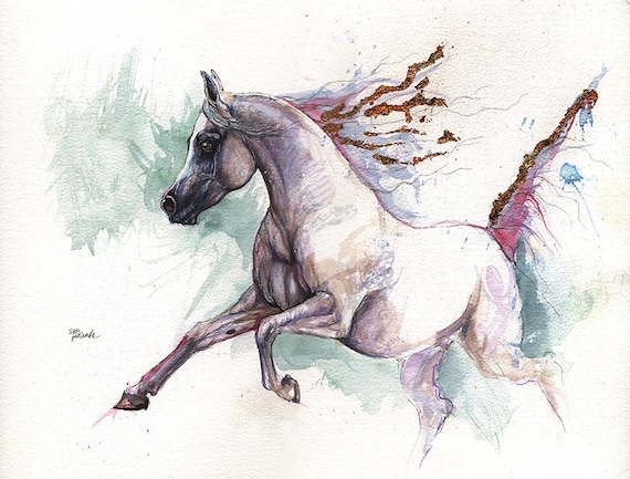 Grey arabian horse original pen and watercolor painting
