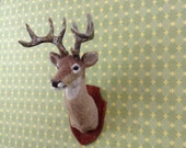 1/12 scale Mounted Whitetailed Deer