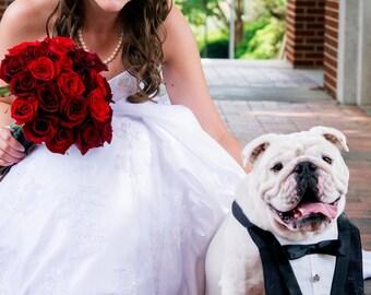 Dog Wedding Tuxedo Bandana Vest Bib in Black Deluxe