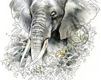 Elephant (African) watercolour - wildlife art - nature print of original artwork