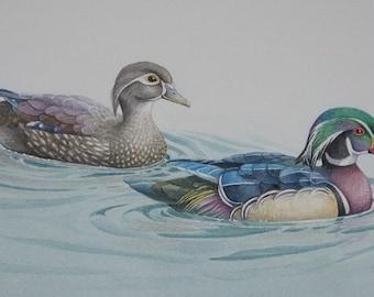 Pair of Wood Ducks - original watercolor painting