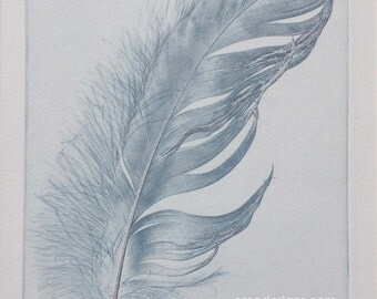 "Feather, original etching LIMITED EDITION Art 6"" x 8"""