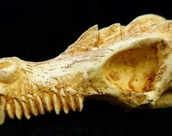 Dragon skull (mm 90 x 45, 33 mm thick)