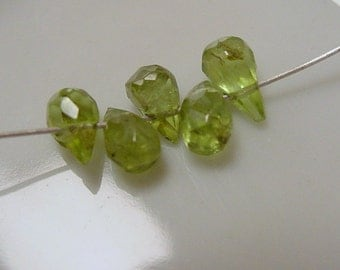 Peridot Faceted Briolette Beads Nice, Sparkly - 5 Beads # 1981