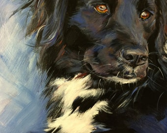 Giclee print: English Shepherd Mix, 8 x 10