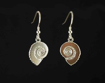 Ammonite drop earrings in 925 sterling silver