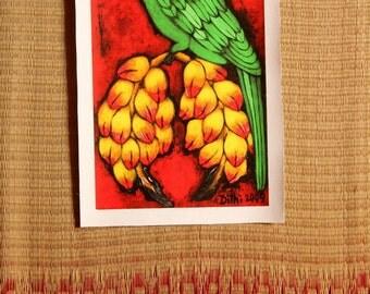 Indian Parakeet CANVAS print