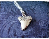 Silver Shark Tooth Necklace - Sterling Silver Shark Tooth Charm on a Delicate Sterling Silver Cable Chain or Charm Only