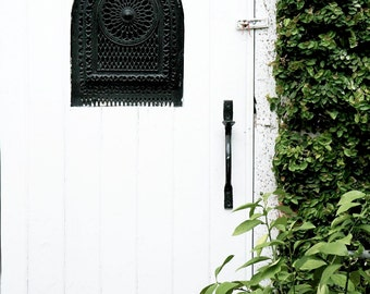 Door Photography - White Door Photograph Charleston South Carolina Photography Southern Decor White Green Black Wall Art Door Photo