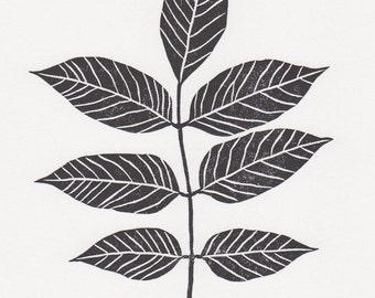 "Block print: Ash tree leaf - limited edition hand pulled fine art block print, linocut print (5 x 7"")"