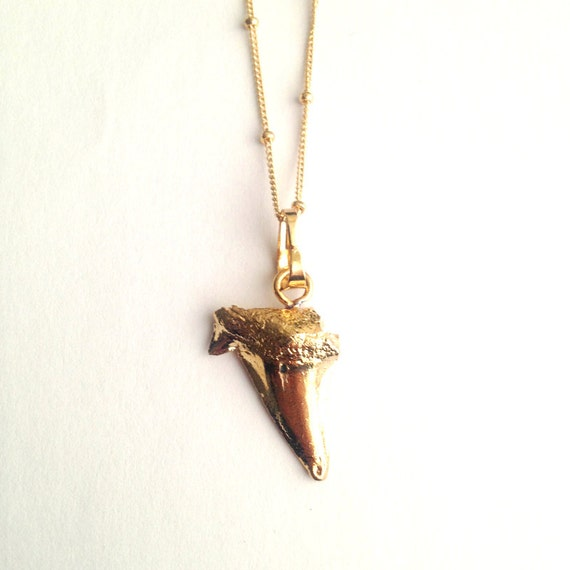 gold shark tooth necklace gold dipped by coastalsoul on etsy