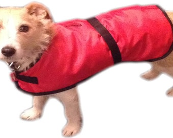 Small Dog Coats, Warm, waterproof, red by Barking Mad Clothing UK. UK Made, fast delivery, excellent quality