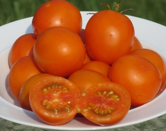 Jaune Flamme Heirloom Tomato Seeds- 25+ Organic Seeds