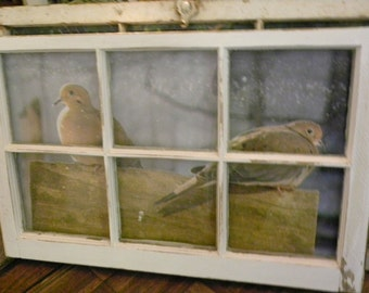 old window with photo of doves
