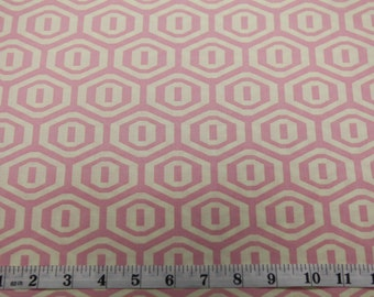 Amy Butler AB25 Midwest Modern Honeycomb