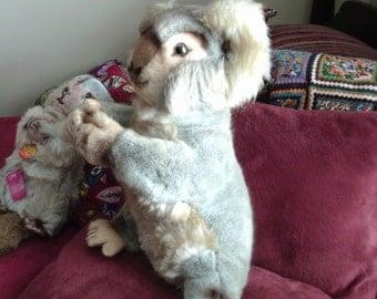 Free Shipping....Large Steiff Koala Bear