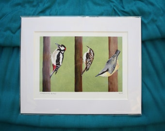 Woodland birds print from original acrylic painting