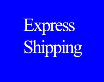 The extra express shipping fees for fast shipping