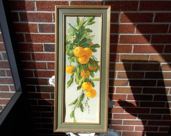 Vintage Turner Wall Accessory/ 1346 E36 Fruits/ Home Decor/ Wall Hanging/ Oranges/ 1950s/ Framed Print