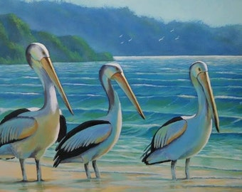 Pelicans by the Shore