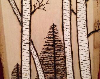 Birch and Pine Tree Wood Burn Art