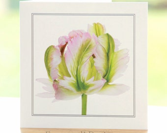 Parrot Tulip flower photograph, blank inside, square greetings card