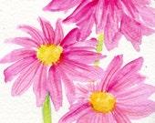 Daisy painting, Pink Daisies watercolors paintings original, small daisy floral art, original watercolor painting of pink daisies, Daisy ART
