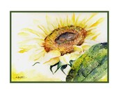 In the Light Watercolor Sunflower Note Cards Notecards, Sunflower Print, Sunflower Stationery, Sunflower Greeting Cards,  Gift Box
