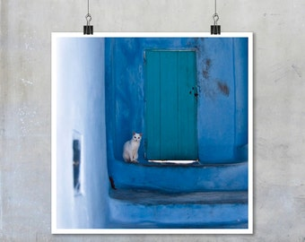 Morocco Cat Photo Chefchaouen white cat home decor large square print Moroccan photography blue teal turquoise gift for cat lovers new home