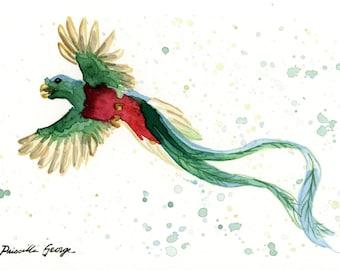 Quetzal Bird Watercolor Painting Print Wall Art Home Decor