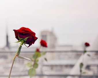 Trois Rouges - Paris Landcape Photography Print by Leigh Viner