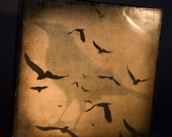 Sepia Black Crow Collage Encaustic Photograph on Wood Panel--A Gathering of Crows--6x6 Fine Art